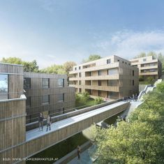 First Large Timbatec Vienna Wooden Residential Building in Planning